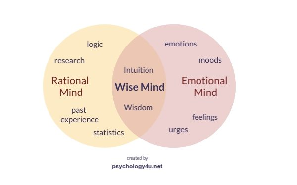 wise mind dbt emotional mind rational